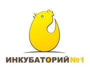 Цыплята бройлеры от производителя! В РОЗНИЦУ и Оптом!
